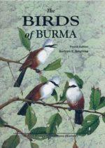 The Birds of Burma (Myanmar)