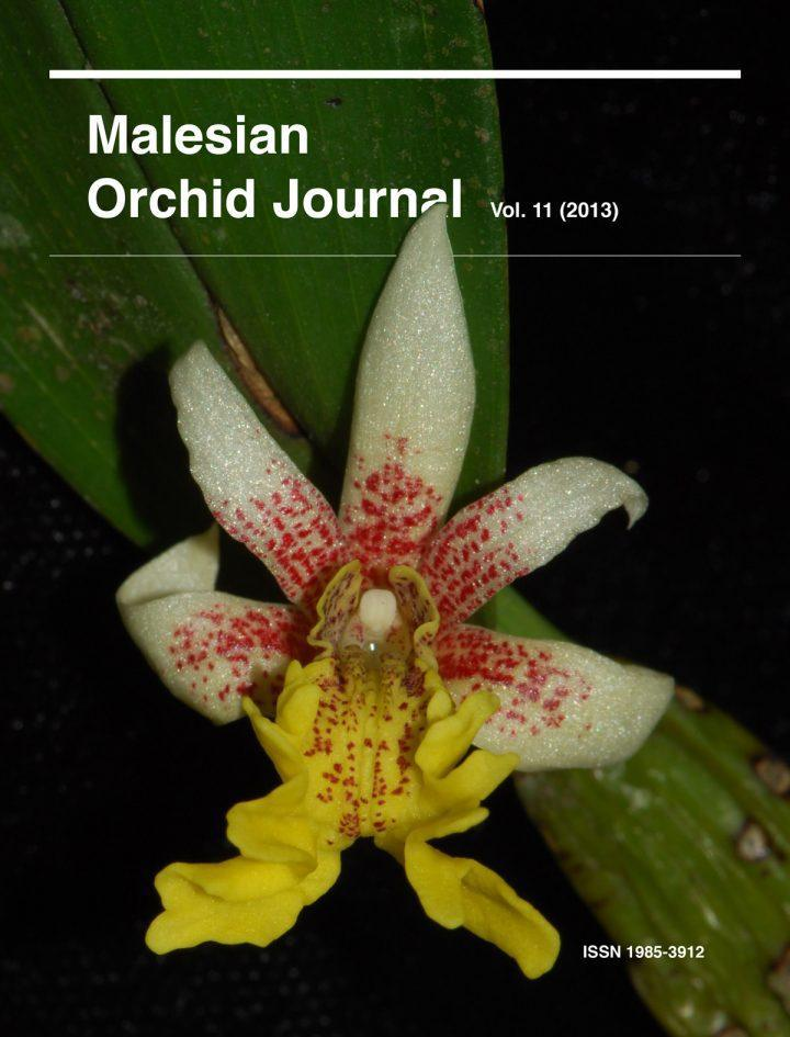 Malesian Orchid Journal Vol. 11