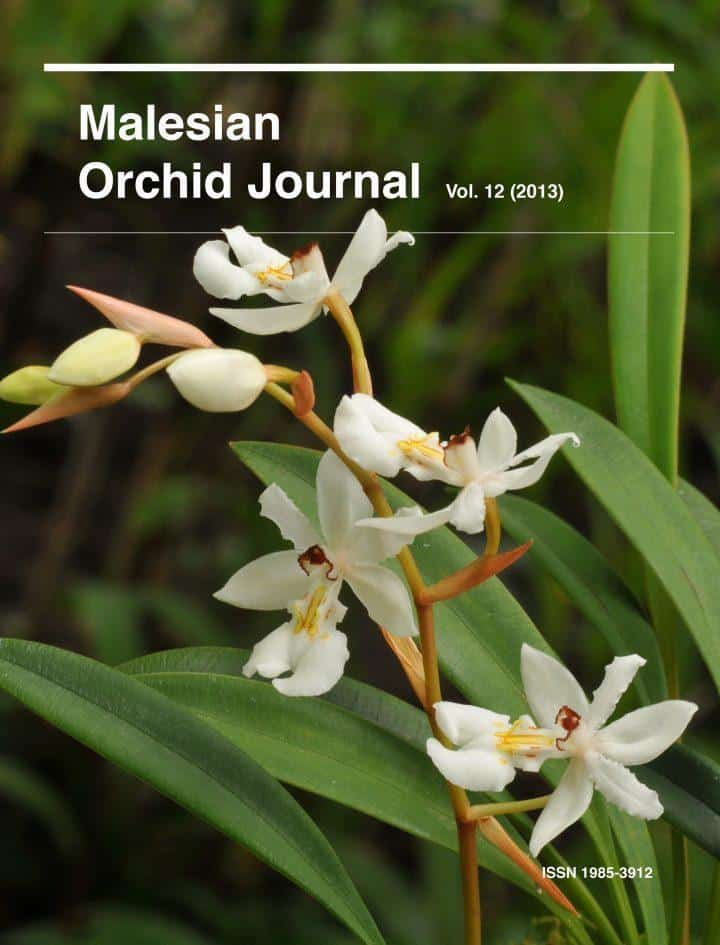 Malesian Orchid Journal Vol. 12