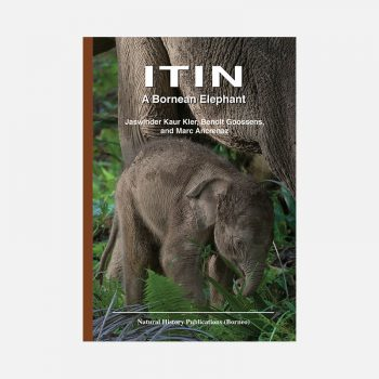 ITIN: A Bornean Elephant