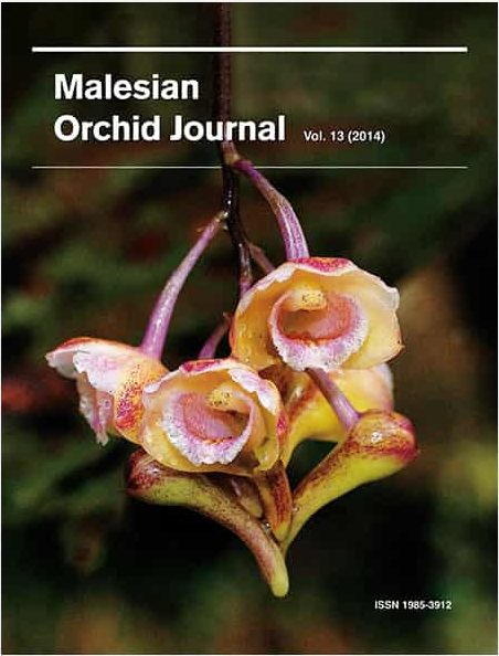 Malesian Orchid Journal Vol. 13