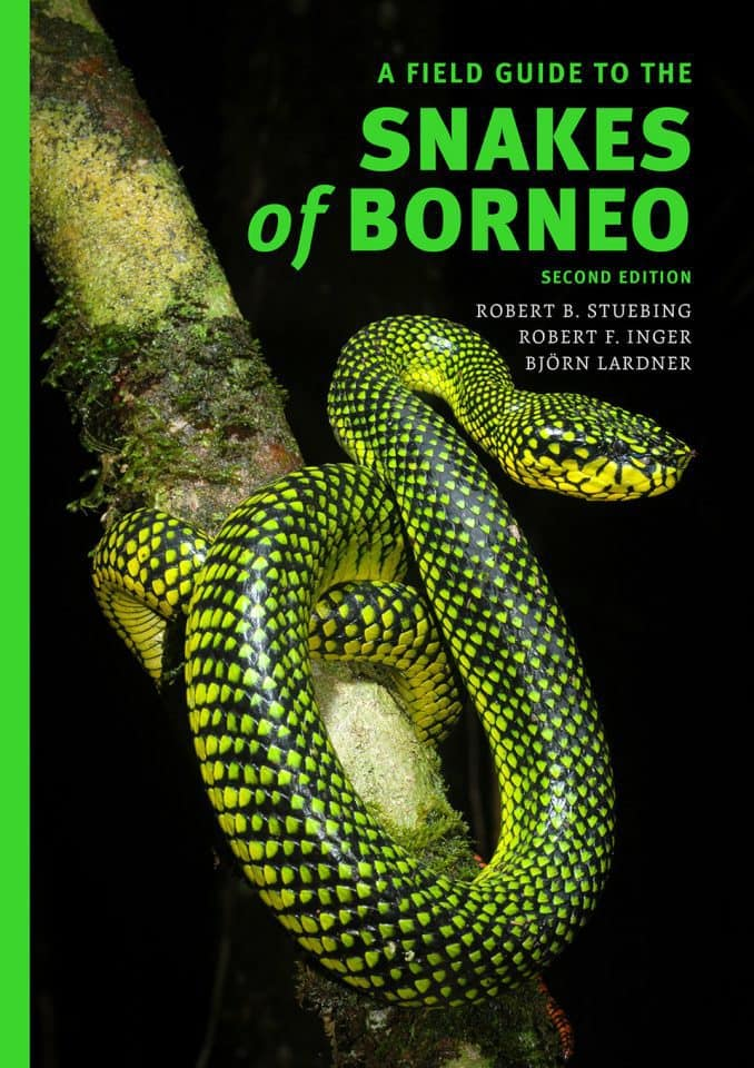 Snakes of Borneo (2nd Edition)