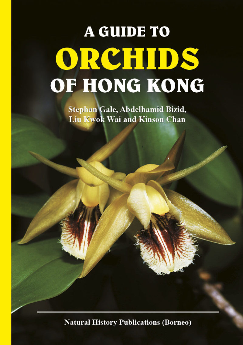 Front cover of A Guide to Orchids of Hong Kong
