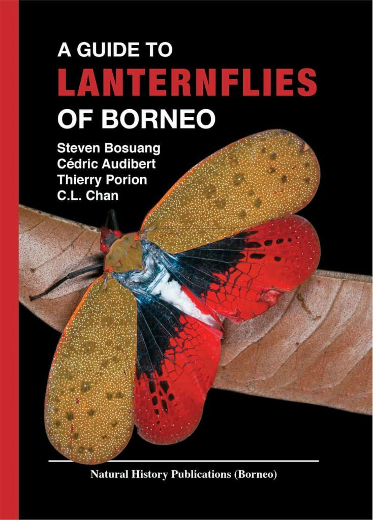 Lanternflies of Borneo Front Cover