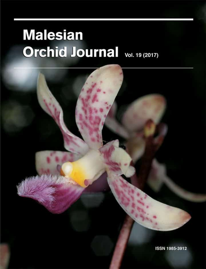 Malesian Orchid Journal Vol. 19