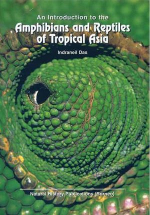 Amphibians and Reptiles of Tropical Asia