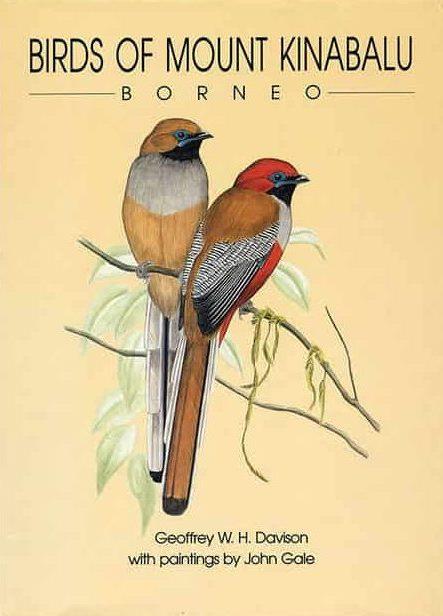 Birds of Mount Kinabalu
